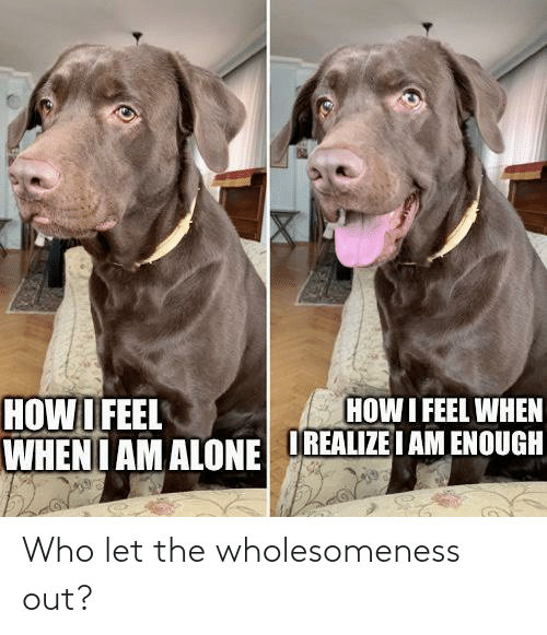 who: Who let the wholesomeness out?