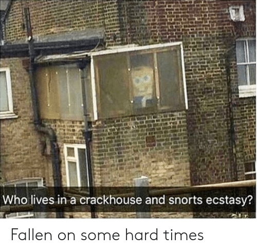 hard times: Who lives in a crackhouse and snorts ecstasy? Fallen on some hard times