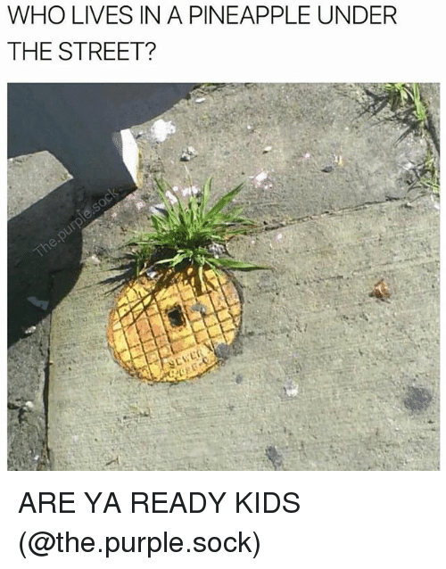 Memes, Kids, and Pineapple: WHO LIVES IN A PINEAPPLE UNDER  THE STREET? ARE YA READY KIDS (@the.purple.sock)