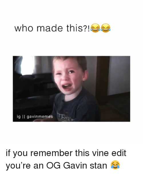 Memes, Stan, and Vine: who made this?  ig II gavinmemesUSY if you remember this vine edit you're an OG Gavin stan 😂