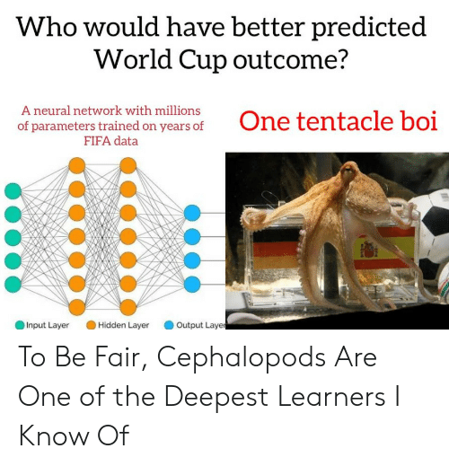 Fifa, World Cup, and World: Who would have better predicted  World Cup outcome?  A neural network with millions  of parameters trained on years of  FIFA data  Input Layer Hidden Layr Output Laye To Be Fair, Cephalopods Are One of the Deepest Learners I Know Of