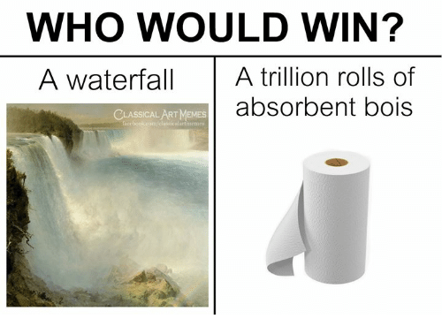 Memes, Classical Art, and Art: WHO WOULD WIN?  A waterfall A trillion rolls of  absorbent bois  LASSICAL ART MEMES  classicalartmemes