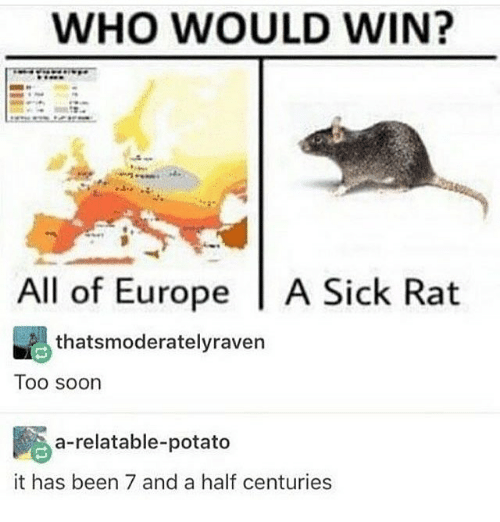 Memes, Soon..., and Europe: WHO WOULD WIN?  All of Europe A Sick Rat  thatsmoderatelyraven  Too soon  a-relatable-potato  it has been 7 and a half centuries