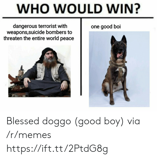 good boy: WHO WOULD WIN?  dangerous terrorist with  weapons,suicide bombers to  threaten the entire world peace  one good boi Blessed doggo (good boy) via /r/memes https://ift.tt/2PtdG8g
