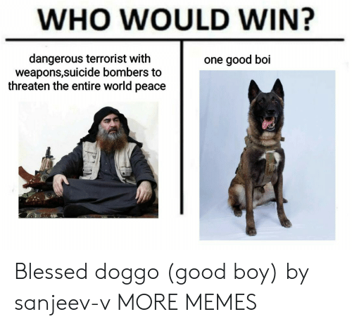 good boy: WHO WOULD WIN?  dangerous terrorist with  weapons,suicide bombers to  threaten the entire world peace  one good boi Blessed doggo (good boy) by sanjeev-v MORE MEMES