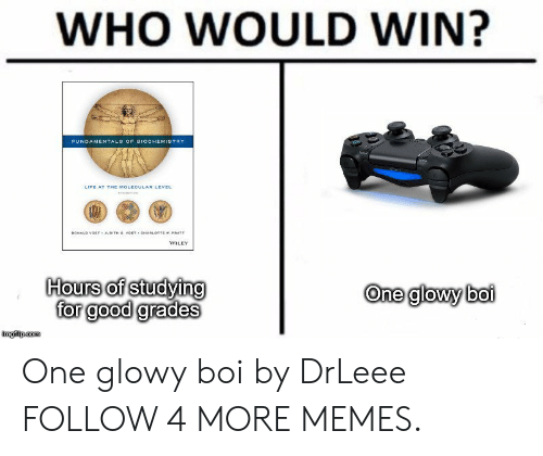 Judith: WHO WOULD WIN?  FUNDAMENTALS OF BIOCHEMISTRY  LIFE AT THE MOLECULAR LEVEL  DONALD VOETY JUDITH G VOET OARLOTTE w. PRATT  WILEY  Hours of studying  for good grades  One glowy boi  imgilp.com One glowy boi by DrLeee FOLLOW 4 MORE MEMES.