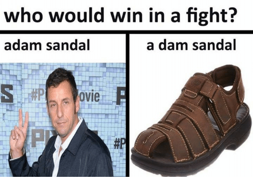 Fight, Who, and Adam: who would win in a fight?  adam sandal  a dam sandal  ovie