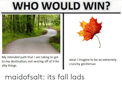 Fall, Tumblr, and Blog: WHO WOULD WIN?  My intended path that I am taking to get  to my destination, not veering off of it for  SI  what i imagine to be an extremely  crunchy gentleman  silly things maidofsalt: its fall lads