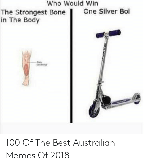 Memes, Best, and Silver: Who Would Win  One Silver Boi  The Strongest Bone  in The Body 100 Of The Best Australian Memes Of 2018