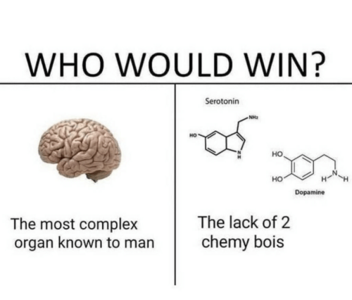 organ: WHO WOULD WIN?  Serotonin  NH2  HO  но  HO  Dopamine  The lack of 2  The most complex  organ known to man  chemy bois