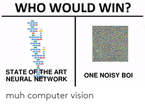 Computer: WHO WOULD WIN?  STATE OF THE ART  NEURAL NETWORK  ONE NOISY BOI muh computer vision