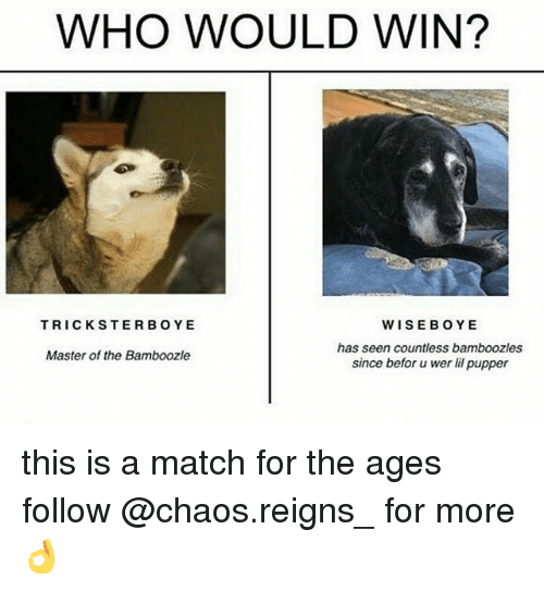 Memes, Match, and 🤖: WHO WOULD WIN?  WISEBOYE  has seen countless bamboozles  since befor u wer lil pupper  TRICKSTERBOYE  Master of the Bamboozle this is a match for the ages follow @chaos.reigns_ for more 👌