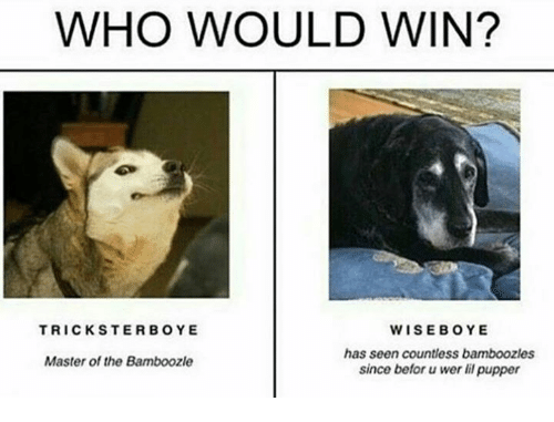Who, Master, and Wins: WHO WOULD WIN?  WISEBOYE  has seen countless bamboozles  since befor wer li pupper  TRICKSTERBOYE  Master of the Bamboozle