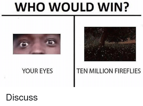 Dank Memes, Who, and Fireflies: WHO WOULD WIN?  YOUR EYES  TEN MILLION FIREFLIES Discuss