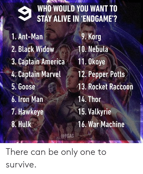 valkyrie: WHO WOULD YOU WANT TO  STAY ALIVE IN 'ENDGAME'?  9. Korg  1. Ant-Man  2. Black Widow10. Nebula  3. Captain America11. 0koye  4. Captain Mavel 12. Pepper Potts  5. Goose  6. Iron Man  7. Hawkeye  8. Hulk  13. Rocket Raccoon  14. Thor  15. Valkyrie  16. War Machine  a9GAG There can be only one to survive.