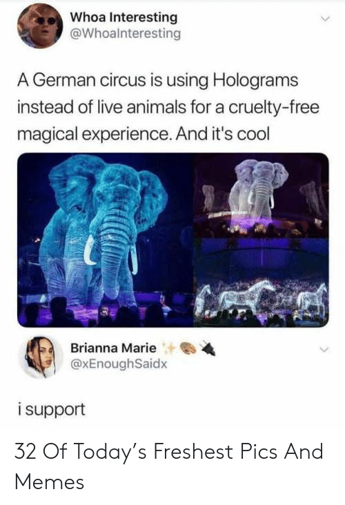 Animals, Memes, and Cool: Whoa Interesting  @Whoalnteresting  .German circus is using Holograms  instead of live animals for a cruelty-free  magical experience. And it's cool  Brianna Marie  @xEnoughSaidx  i support 32 Of Today's Freshest Pics And Memes