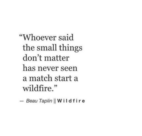 "Match, Never, and Wildfire: ""Whoever said  the small things  don't matter  has never seen  a match start a  wildfire.""  - Beau Taplin 