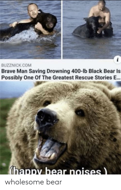 Bear: wholesome bear