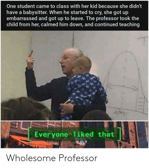 Wholesome: Wholesome Professor