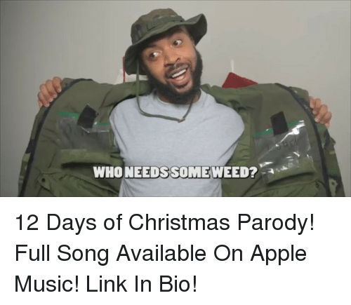 Apple, Christmas, and Memes: WHONEEDS SOMEWEED? 12 Days of Christmas Parody! Full Song Available On Apple Music! Link In Bio!