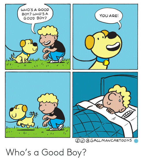 You Are: WHO'S A GOOD  BOY? WHO'S A  GOOD BOY?  YOU ARE!  @GALLMANCARTOONS Who's a Good Boy?