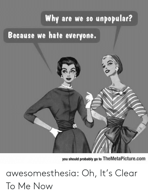 Unpopular: Why are we so unpopular?  Because we hate everyone.  you should probably go to TheMetaPicture.com awesomesthesia:  Oh, It's Clear To Me Now