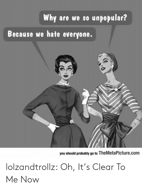 Unpopular: Why are we so unpopular?  Because we hate everyone.  you should probably go to TheMetaPicture.com lolzandtrollz:  Oh, It's Clear To Me Now