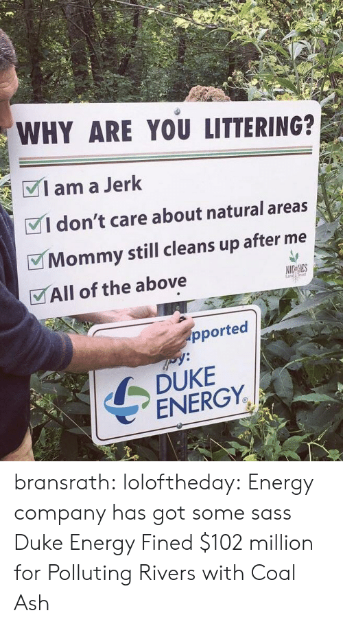Ash, Energy, and Tumblr: WHY ARE YOU LITTERING?  Iama Jerk  VI don't care about natural areas  Mommy still cleans up after me  VAll of the above  rust  pported  DUKE  ENERGY. bransrath:  loloftheday: Energy company has got some sass Duke Energy Fined $102 million for Polluting Rivers with Coal Ash