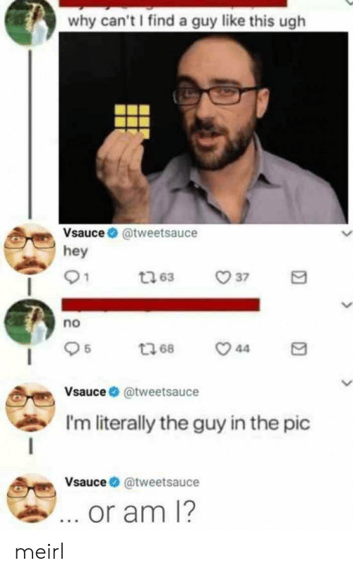 MeIRL, Why, and This: why can't I find a guy like this ugh  Vsauce@tweetsauce  hey  37  t63  ou  t68  44  Vsauce@tweetsauce  I'm literally the guy in the pic  Vsauce@tweetsauce  ... or am 1? meirl