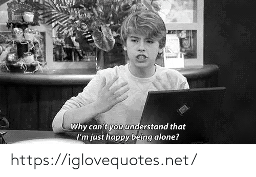 Being Alone, Happy, and Net: Why can't you understand that  I'm just happy being alone? https://iglovequotes.net/