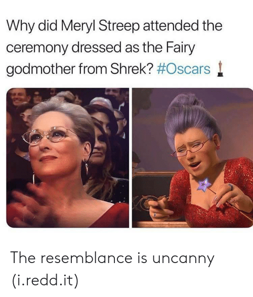 meryl: Why did Meryl Streep attended the  ceremony dressed as the Fairy  godmother from Shrek? #Oscars l The resemblance is uncanny (i.redd.it)