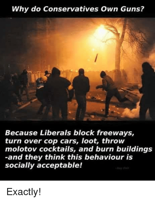 Cars, Guns, and Memes: Why do Conservatives Own Guns?  Because Liberals block freeways,  turn over cop cars, loot, throw  molotov cocktails, and burn buildings  -and they think this behaviour is  socially acceptable! Exactly!