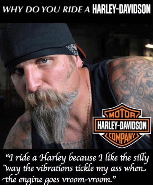 "Ass, Harley, and Harley Davidson: WHY DO YOU RIDE A HARLEY-DAVIDSON  MOTOF  | HARLEY-DAVIDSON  ""] ride  way the vibratíóns tíckle my ass when'  rthe engine goes vroom-vroom.""  a Harley because 1 like the sílly  0S"
