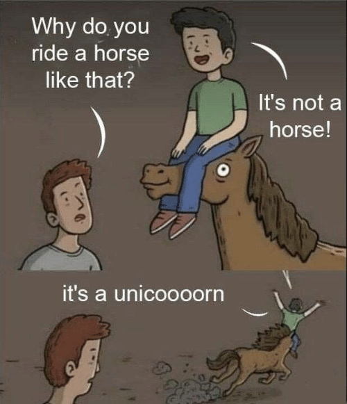 Horse, Why, and You: Why do you  ride a horse  like that?  It's not a  horse!  it's a unicoooorn