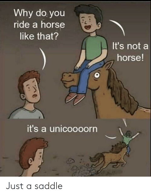 Its Not: Why do you  ride a horse  like that?  It's not a  horse!  it's a unicoooorn Just a saddle