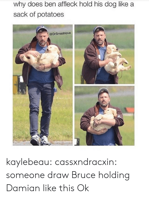 potatoes: why does ben affleck hold his dog like a  sack of potatoes  @DrSmashlove kaylebeau:  cassxndracxin:  someone draw Bruce holding Damian like this   Ok