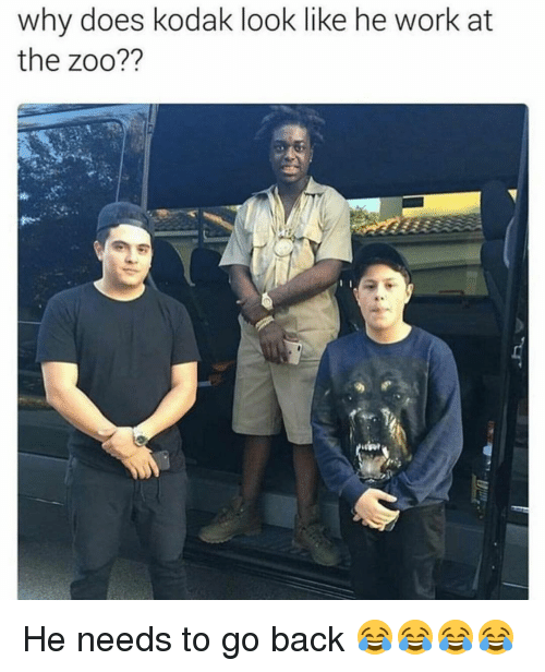 Why Doe: why does kodak look like he work at  the zoo?? He needs to go back 😂😂😂😂