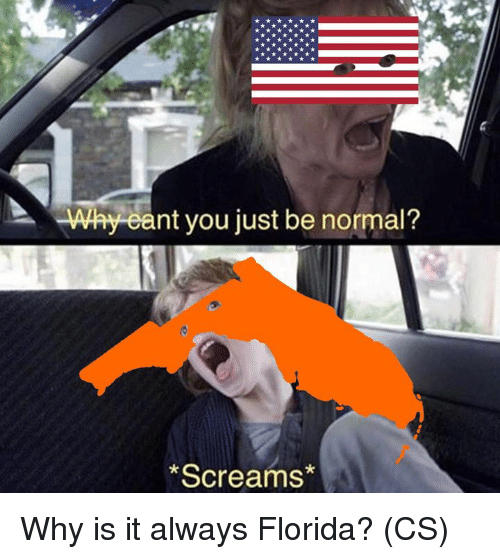Memes, Florida, and 🤖: Why eant you just be normal?  Screams Why is it always Florida? (CS)