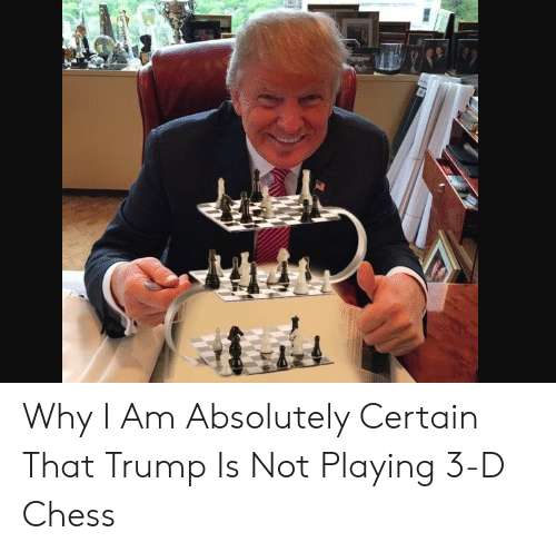 4 Dimensional Chess: Why I Am Absolutely Certain That Trump Is Not Playing 3-D Chess