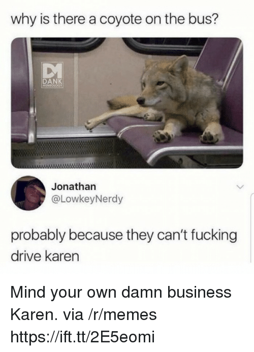 Dank, Fucking, and Memes: why is there a coyote on the bus?  DANK  EMICLOGY  Jonathan  @LowkeyNerdy  probably because they can't fucking  drive karen Mind your own damn business Karen. via /r/memes https://ift.tt/2E5eomi