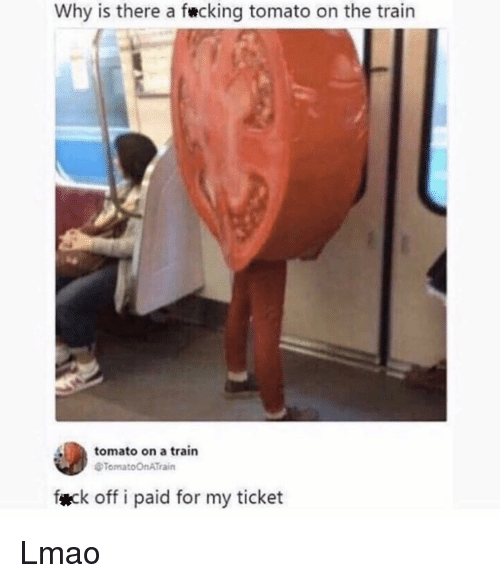 Lmao, Memes, and Train: Why is there a fecking tomato on the train  tomato on a train  eTomatoOnATrain  fæck off i paid for my ticket Lmao