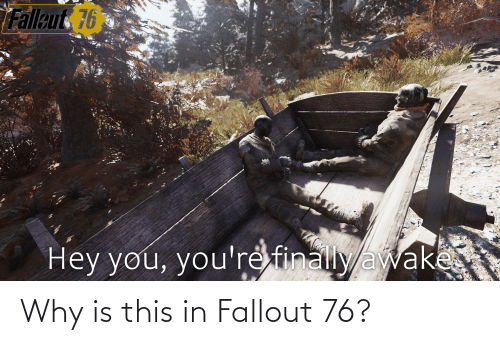 Fallout: Why is this in Fallout 76?