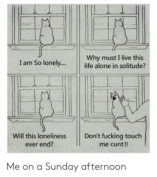 Cunt: Why must I live this  life alone in solitude?  I am So lonely..  Don't fucking touch  Will this loneliness  ever end?  me cunt!! Me on a Sunday afternoon