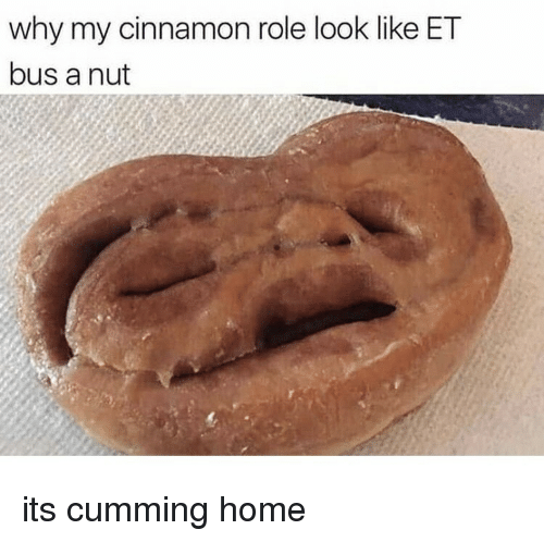 Home, Cinnamon, and Bus: why my cinnamon role look like ET  bus a nut its cumming home