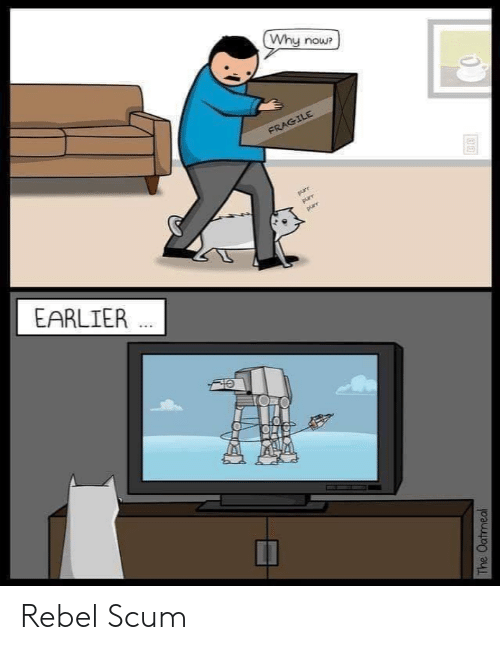 rebel: Why now?  FRAGILE  purr  purr  purr  EARLIER  The Oatmeal Rebel Scum