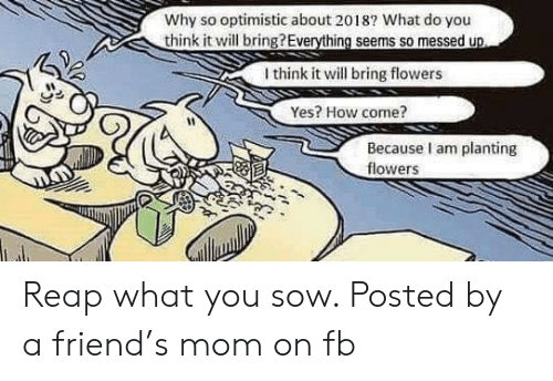 Flowers, Optimistic, and Mom: Why so optimistic about 2018? What do you  Uthink it will bring?Everything seems so messed up  I think it will bring flowers  Yes? How come?  Because I am planting  flowers Reap what you sow. Posted by a friend's mom on fb
