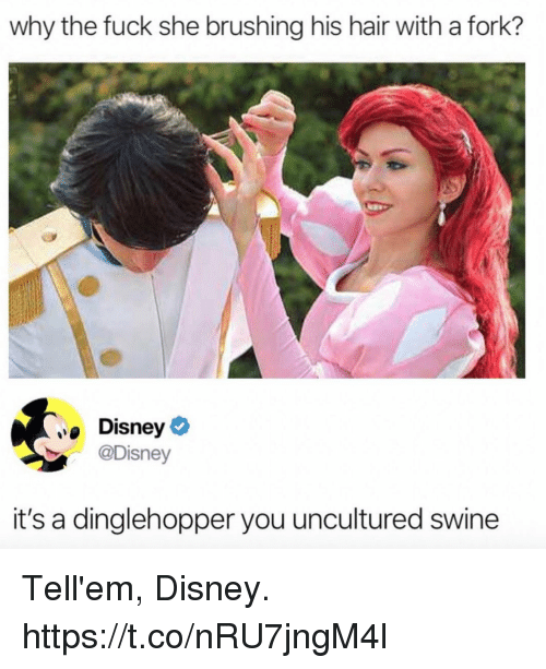 Disney, Funny, and Fuck: why the fuck she brushing his hair with a fork?  Disney  @Disney  it's a dinglehopper you uncultured swine Tell'em, Disney. https://t.co/nRU7jngM4l