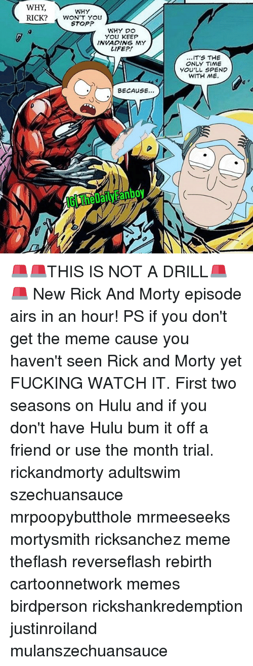 Fucking, Hulu, and Life: WHY  WHY  STOP?  WHY DO  YOU KEEP  INVADING MY  LIFE?!  ...IT'S THE  ONLY TIME  YOU'LL SPEND  WITH ME.  BECAUSE.  IG TheDailyFanboy 🚨🚨THIS IS NOT A DRILL🚨🚨 New Rick And Morty episode airs in an hour! PS if you don't get the meme cause you haven't seen Rick and Morty yet FUCKING WATCH IT. First two seasons on Hulu and if you don't have Hulu bum it off a friend or use the month trial. rickandmorty adultswim szechuansauce mrpoopybutthole mrmeeseeks mortysmith ricksanchez meme theflash reverseflash rebirth cartoonnetwork memes birdperson rickshankredemption justinroiland mulanszechuansauce