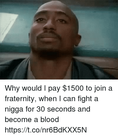Fraternity, Hood, and Fight: Why would I pay $1500 to join a fraternity, when I can fight a nigga for 30 seconds and become a blood https://t.co/nr6BdKXX5N