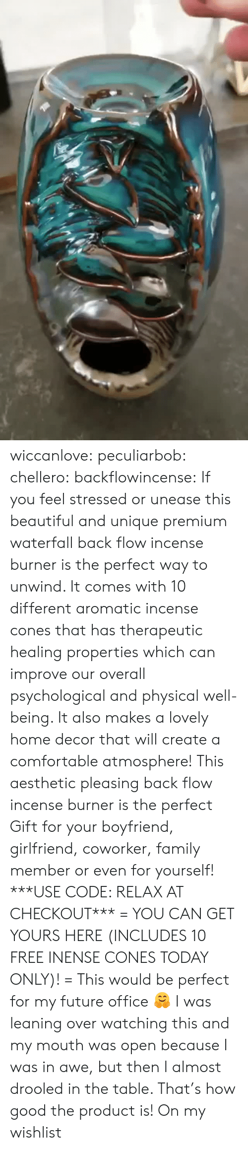 cones: wiccanlove:  peculiarbob: chellero:   backflowincense:  If you feel stressed or unease this beautiful and unique premium waterfall back flow incense burner is the perfect way to unwind. It comes with 10 different aromatic incense cones that has therapeutic healing properties which can improve our overall psychological and physical well-being. It also makes a lovely home decor that will create a comfortable atmosphere! This aesthetic pleasing back flow incense burner is the perfect Gift for your boyfriend, girlfriend, coworker, family member or even for yourself! ***USE CODE: RELAX AT CHECKOUT*** = YOU CAN GET YOURS HERE (INCLUDES 10 FREE INENSE CONES TODAY ONLY)! =   This would be perfect for my future office 🤗   I was leaning over watching this and my mouth was open because I was in awe, but then I almost drooled in the table. That's how good the product is!   On my wishlist